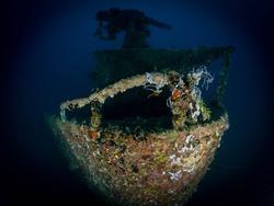Guam Scuba Diving Underwater Photography Divers Blackwater Bonfire Scubadiving