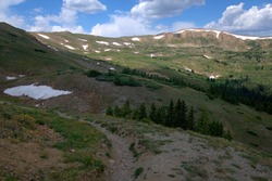 Guanella Pass passes through two national forests on it's way from I-70 to US 285. It begins in Georgetown, CO,