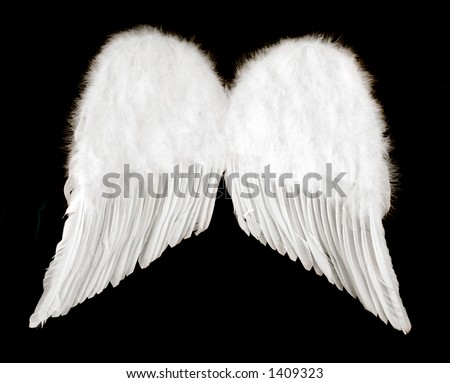 Guardian Angel Wings Isolated on Black