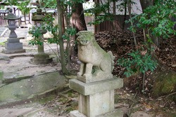 Guardian dog at an old shrine