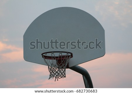 Guelph basketball net