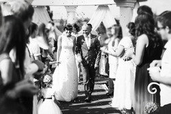 Guests Throwing Confetti Over Bride And Groom black and white