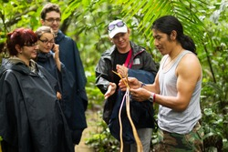 guid tour tourist ecuador local group amazon hike jungle forest naturalist local guide with group of tourist in cuyabeno wildlife reserve ecuador guid tour tourist ecuador local group amazon hike jung
