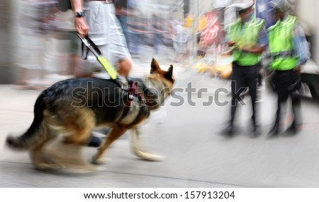 Guide dog is helping bilnd people in motion blur