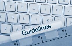 Guidelines Written on Blue folder