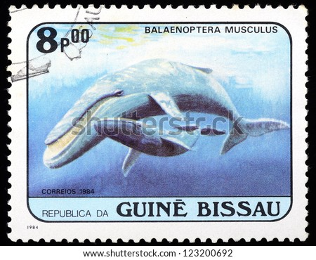 GUINEA-BISSAU - CIRCA 1984: an 8p stamp from Guinea-Bissau shows image of a Blue whale (Balaenoptera musculus), circa 1984