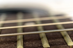 Guitar string close up, fretboard and frets