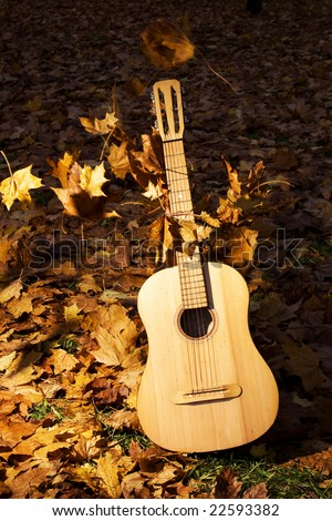 guitar with flying leaves