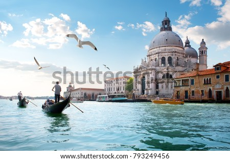 Gulls over Grand Canal #793249456
