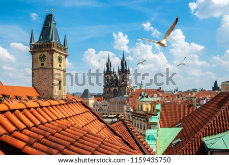 Gulls over Prague chimes and Tynsky cathedral at summer day