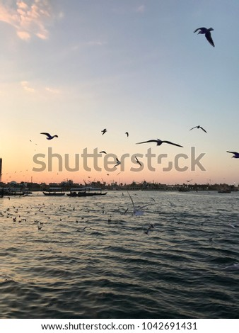 Gulls with boat and river #1042691431