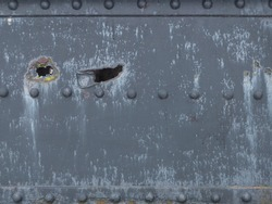 Gun shrapnel signs in the rusty metal sheets of the bridge.