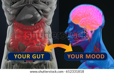 Gut-brain connection or gut brain axis. Concept art showing a connection from the gut, influencing your mood. 3d illustration.
