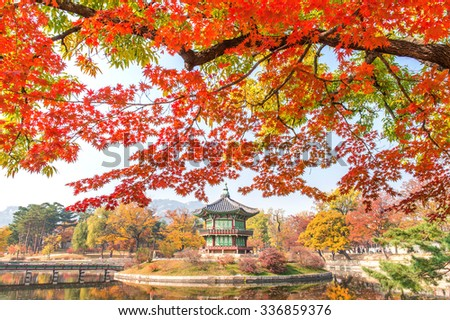 Stock Photo Gyeongbokgung Palace and Soft focus of Maple tree in autumn,Korea.