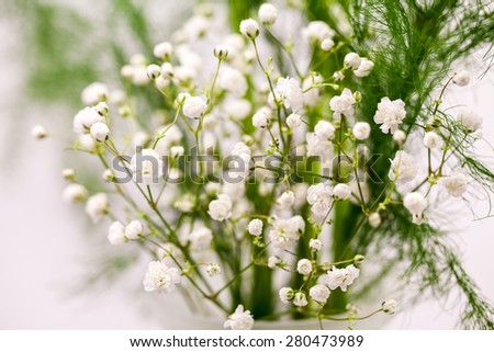 Small White Flowers Used In Bouquets