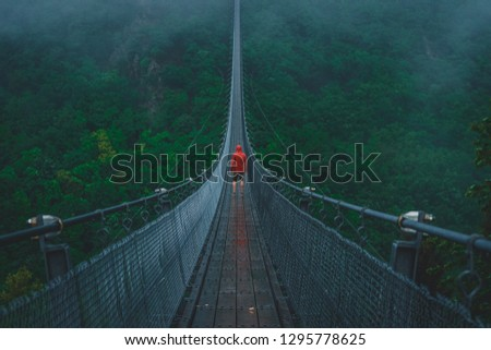 Hängeseilbrücke Geierlay germany #1295778625