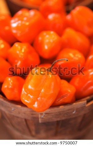 Habanero for sale in a basket on a open air market stall