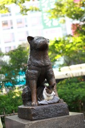 Hachiko Statue with a cat at Shibuya Station, Tokyo, Japan