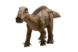 hadrosaurus isolated on white background.