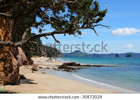 Hahei Beach in Coromandel peninsula. New Zealand - North Island.