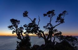Hahei, Coromandel, New Zealand