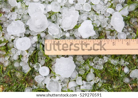 Hail in the grass and yardstick after a storm
