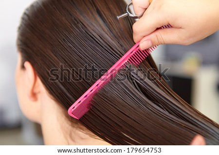 Hair Salon Woman Haircut Cutting Stock Images Page Everypixel