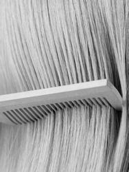 Hairbrushing woman hairbrush blonde long healthy hair beauty