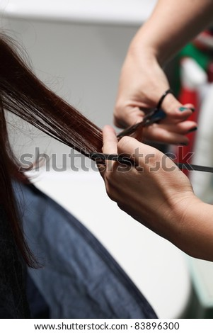 hairdresser cutting woman hair indoor