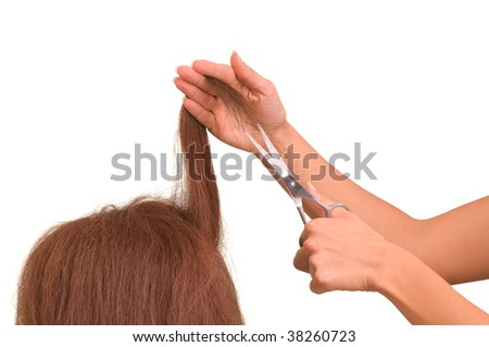 hairdresser is cutting young woman in the saloon