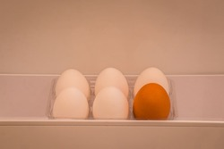 Half a dozen organic eggs, 5 white and 1 brown kept in a fridge door