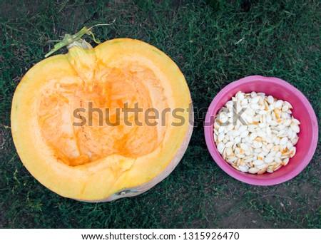Half cut pumpkin and pumpkin seeds in a pink bowl beside top view. Harvesting, the benefits of eating pumpkin seeds. #1315926470