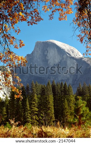 Half Dome at Yosemite National Park, California, framed with autumn oak leaves