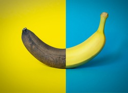 Half good half gear banana on two-tone blue and yellow background, graphic element, concept of old and new, modern design, ideal for graphic backgrounds