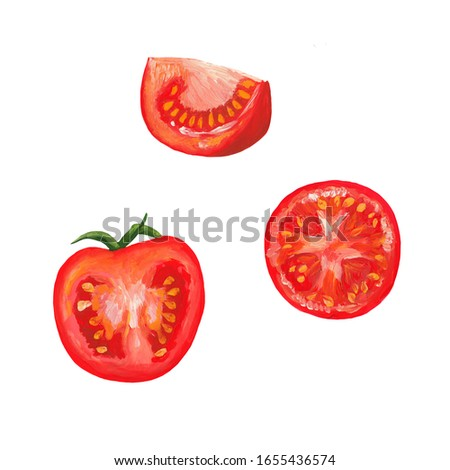 Half of red tomato, sliced tomato circle, sliced tomato slice isolated on white. Hand drawn gouache paints vegetable illustration of ripe. Realistic illustration of appetizing tomatoes parts.