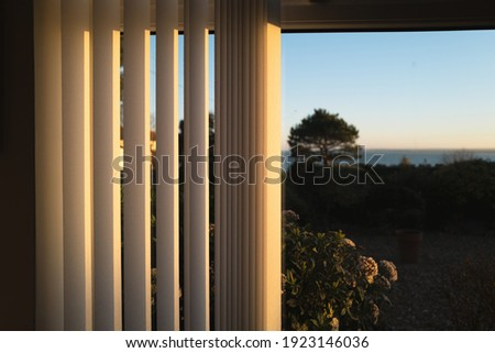 Half open vertical blinds with a golden glow as the sun sets.There is a tree and a view of the sea through the window. Stock photo ©