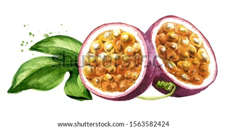 Half passion fruit maracuya with green leaf. Watercolor hand drawn illustration, isolated on white background