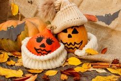 Halloween. a cheerful Halloween pumpkin among the leaves. Side view