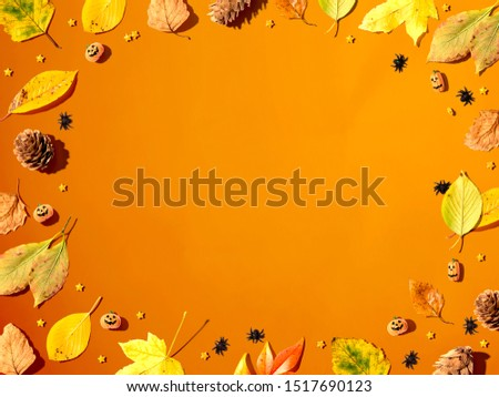 Halloween and autumn leaf border from above - flat lay