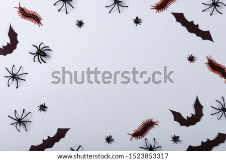 Halloween and decoration concept, miscellaneous bats, spiders, centipede and flies on gray background. #1523853317