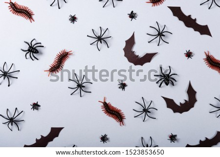 Halloween and decoration concept, miscellaneous bats, spiders, centipede and flies on gray background #1523853650