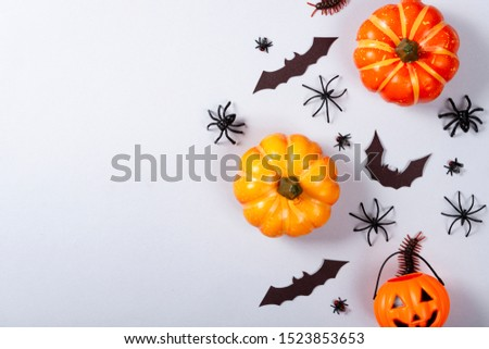 Halloween and decoration concept, miscellaneous bats, spiders, centipede and flies on gray background #1523853653