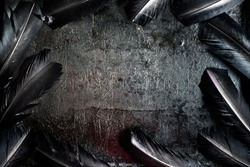 Halloween background with black raven feathers on dark grunge backdrop. Horror gothic abstract design with copyspace. Closeup of bird wing texture