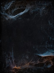 Halloween background with copyspace. Old terrible cobweb in darkness