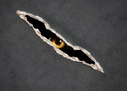 Halloween background with paper texture of grey color and monster eye in hole in the paper. Look from darkness.
