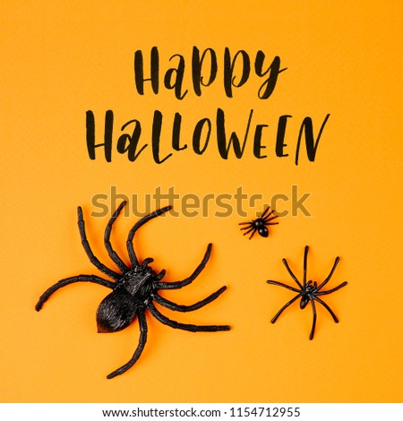 Halloween background with  spiders. Flat lay, top view trendy holiday concept. #1154712955