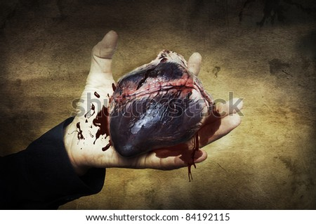 Halloween concept. raw heart of pig in hand with blood. Retro style image of vampire heart