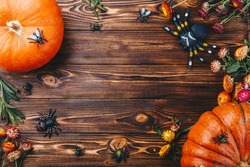 Halloween concept with fresh pumpkins, spiders and bugs close-up on the table. Trick or Treat view from above
