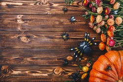 Halloween concept with fresh pumpkins, spiders and bugs with flowers. Trick or Treat view from above