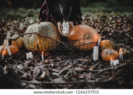 Stock Photo Halloween decor. 4k wallpaper. Woman looks like a witch sitting with pumpkins on the ground in autumn forest